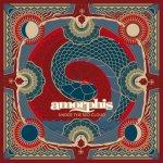 Neues Lyric-Video von Amorphis